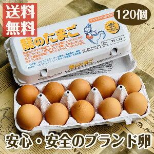 国産ブランド鶏卵 「龍のたまご」 120個 大分県産 (10個入り×12パック )【送料無料 赤玉 赤卵 濃厚 こだわり おいしい 卵 高級 プレゼント ギフト 贈り物 贈答品 お中元 お歳暮 御歳暮 お中