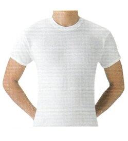 【送料無料】グンゼ 2枚組 やわらか肌着 半袖丸首シャツ  M・L・LL綿100%の 肌着です。SV61142