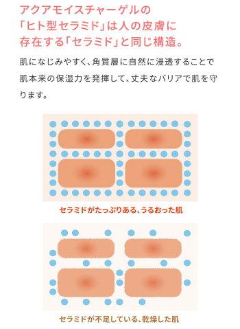 肌◯アクアモイスチャーゲル/解決策01セラミドと肌への浸透