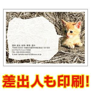 【差出人印刷込み 官製はがき 30枚】 多目的絵はがき MUSF-56 ポストカード 風景写真はがき
