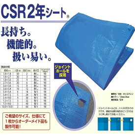 ブルーシート CSR2年シート 10.0mX10.0m