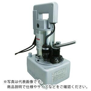 RIKEN 可搬式小型ポンプ SMP-3012B ( SMP3012B ) (株)理研商会