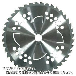 GS まかないチップソーII Wトルネード 255×40P ( 210513 ) キンボシ(株)