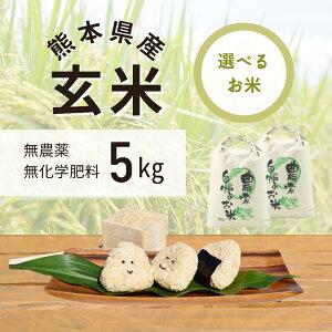 令和3年産 無農薬 玄米 5kg ヒノヒカリ 熊本県上益城郡山都町産 送料無料 無化学肥料で栽培 オーガニック ヴィーガン