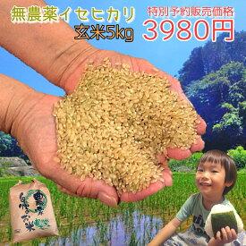 《健康は毎日の食事から》玄米食、はじめてみませんか?無農薬 無化学肥料で栽培 血糖値の上昇を抑える、高アミロースのイセヒカリ 玄米 5kg 数量限定ですのでご予約ください! 令和元年熊本県産 美味しい お米 生産者 直送 こめ コメ 米 有機肥料 新米