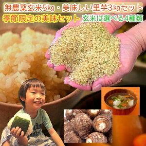 無農薬 玄米 5kg 里芋 3kg セット お米は選べる4種類 季節限定の美味セットコシヒカリ イセヒカリ ヒノヒカリ にこまる 熊本県産