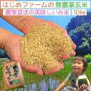 無農薬 玄米 10kg コシヒカリ イセヒカリ ヒノヒカリ にこまる から選べる 送料無料 無農薬 無化学肥料で栽培