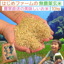 令和2年産 無農薬 玄米 10kg コシヒカリ イセヒカリ ヒノヒカリ から選べる 熊本県上益城郡山都町産 送料無料 無化学肥料で栽培 オーガニック ヴィーガン