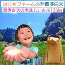 《予約販売》令和2年産 無農薬 白米25kg ヒノヒカリ 粒の大きさにバラつき有り 送料無料 無農薬 無化学肥料で栽培 新米 熊本県上益城郡産