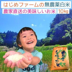 数量限定 無農薬 白米10kg ヒノヒカリ 粒の大きさにバラつき有り 送料無料 無農薬 無化学肥料で栽培 令和元年産 新米 熊本県上益城郡産