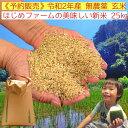 令和2年産 無農薬 玄米 25kg コシヒカリ イセヒカリ ヒノヒカリ から選べる 熊本県上益城郡山都町産 送料無料 無農薬 無化学肥料で栽培
