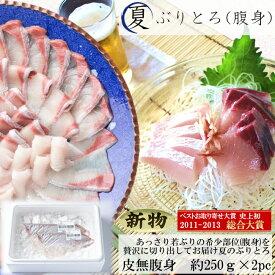 送料無料 新物 夏 ぶりとろ 刺身用 約250g 2pc ブリ トロ ぶり 鰤 目利き食道