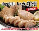 【ヤマノ中村商店】いか粕漬(10尾入)