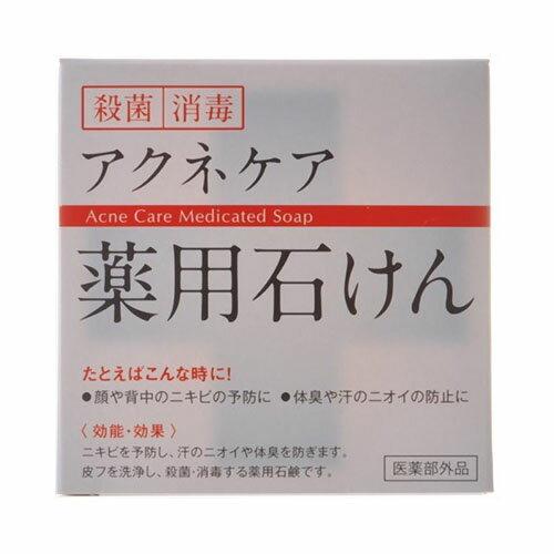 もっちり泡洗顔!アクネケア薬用石けん 固形石鹸 HYA-SAY 医薬部外品 クロバーコーポレーション ※