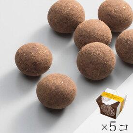 【まとめ買い】金沢箔菓子 金箔入 チョコボーロ×5個 金沢金箔の箔一(はくいち) 