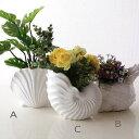 フラワーベース 花瓶 陶器 花器 鉢カバー おしゃれ 白 貝 デザイン 陶器のシェルベース 3タイプ