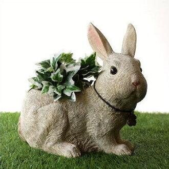 钵种植者漂亮的兔子兔子杂货陈设品装饰花园题材Rabbit树脂种植者