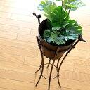 フラワーラック フラワースタンド アイアン 鉢カバー フラワースタンド フラワースタンド 花台 ガーデンスタンド フラワースタンド 2バードプラントスタンド