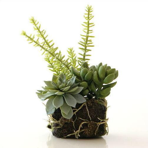 フェイクグリーン 多肉植物 ミニ 小さい インテリア おしゃれ 苔玉 人工観葉植物 フェイクな多肉の苔球 B