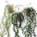フェイクグリーン CT触媒 消臭 壁掛け 天井 壁 吊り下げ グリーン 観葉植物 インテリア 玄関 人工観葉植物 リビング トイレ 洗面所 キッチン おしゃれ かわいい ディスプレイ 雑貨 CT触媒付