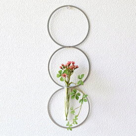 フラワーベース 一輪挿し 壁掛け インテリア 花瓶 ガラス管 試験管 モダン シンプル ウォールアート 壁飾り 壁面 ディスプレイ アルミとガラスのベース リング