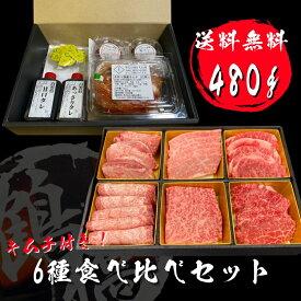 敬老の日 プレゼント 牛肉 焼肉セット 焼肉 ギフト お祝い 大阪鶴橋焼肉 6種食べ比べ 480g タレ キムチ 付き 大阪 鶴橋 焼肉 白雲台