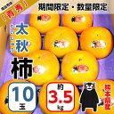 【期間限定・数量限定】太秋柿 熊本 10玉 約3.5kg 青秀 熊本県産 かき 糖度14〜16度<訳あり商品ではありません>