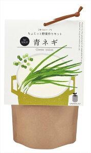 育てるスープ 青ネギ ギフト 聖新陶芸 景品 ガーデニング 観葉植物 プレゼント