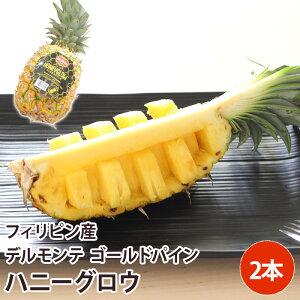 【フィリピン産】送料無料 パインアップル 2本パイナップル パイン ハニーグロウパイン/Honeyglow