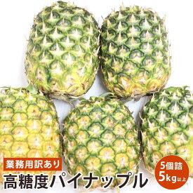 【フィリピン産】業務用訳あり高糖度パイナップル 5個 5キロ以上 【送料無料】【5kg以上】送料無料
