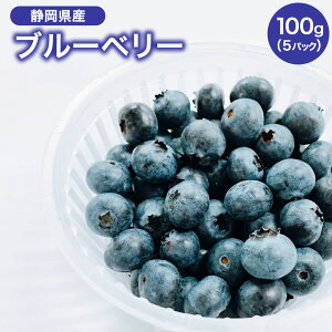 【静岡県産】ブルーベリー100g入り 5パック お得用 遠州夢咲
