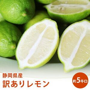 静岡県産 訳あり レモン 5キロ送料無料 訳あり ギフト 果物 フルーツ