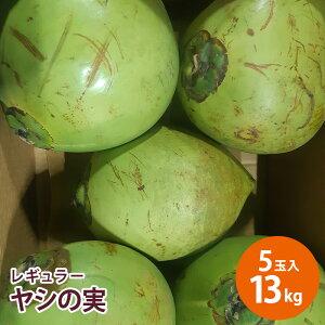 【フィリピン産】レギュラーヤシの実 5玉入 約13キロヤシの実 ココナッツ ココナッツミルク ココナッツオイル 美容 健康 フルーツ 送料無料