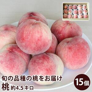 【クール便】 長野県産 須高の桃 約4.5キロ 15個入り もも 【送料無料】 旬の桃 もも ピーチ フルーツ 夏ギフト