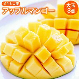 アップルマンゴー 1玉約500g3個 送料無料 メキシコマンゴー アルフォンス 甘い トロピカル 舶来品 輸入品