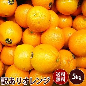 【オーストラリア産】訳ありオレンジ 大特価送料無料 訳あり ギフト 果物 フルーツ