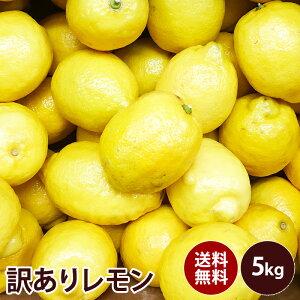 訳あり レモン 大特価送料無料 訳あり ギフト 果物 フルーツ