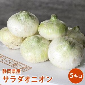 【静岡県産】サラダオニオン ホワイトオニオン 5kg
