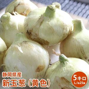【静岡県産】新玉葱(黄色)5キロ 新たまねぎ たまねぎ 玉葱 玉ネギ 玉ねぎ タマネギ