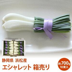 【静岡県産】浜松産 エシャレット 箱売り 10束入り 約700gエシャレット 国産 エシャレット 野菜