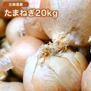【北海道産】たまねぎ 20kg L 約100個入 1玉約200g 玉葱 玉ねぎ オニオン onion カレー 業務用