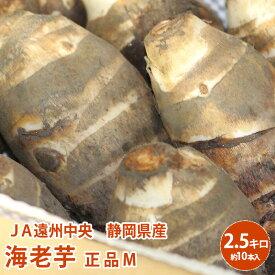 【静岡県産】送料無料 JA遠州中央 海老芋 正品M 2.5キロえびいも送料無料