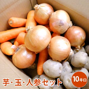 芋・玉・人参セット 10キロ野菜 じゃがいも にんじん たまねぎ セット 男爵 北海道北見産 煮物 カレー 野菜セット
