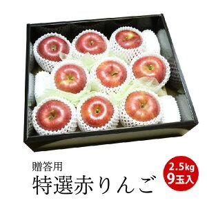 【青森・長野県産】りんご 2.5キロ(9玉入り)林檎 リンゴ 特選 贈答用 フルーツ ギフト プレゼント送料無料