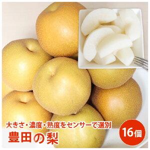 豊田の梨 16個梨 送料無料 ギフト 果物 フルーツ 栄養豊富