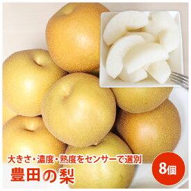 豊田の梨 8個梨 送料無料 ギフト 果物 フルーツ 栄養豊富