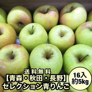 【青森・秋田・長野県産】セレクション青りんご 16入り 5kg 青りんご 送料無料