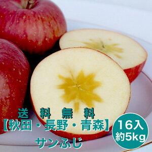 【青森・秋田・長野県産】 サンふじ 16入り 5kg りんご リンゴ 林檎