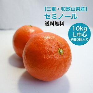 【三重県産】セミノール L 10kg 約60個入 箱売り 送料無料 みかん 晩柑類 果物