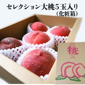 【長野県産】セレクション大桃 およそ1.2kg 5個入り 化粧箱 送料無料 ギフト おうち フルーツ 果物 ギフト peach もも 季節 旬